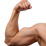 Some Tips to Help Build Biceps