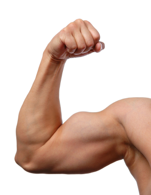 Tips to build biceps.