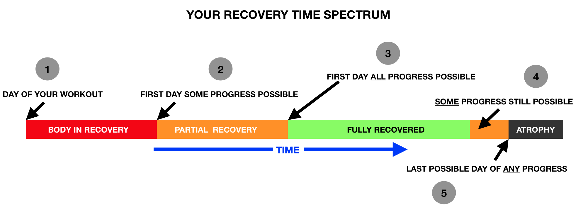 Your Recovery Time Spectrum