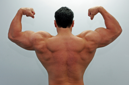 Gaining Muscle Size Power Factor Beta Workout